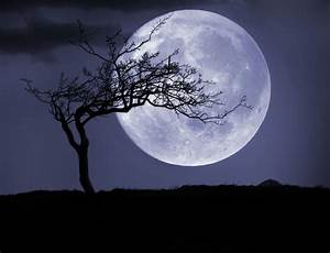 Magical Workings for The Full Moon