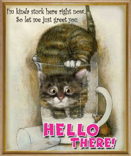 cute cat greets    ecards greeting cards