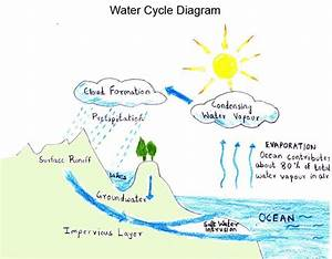 The Water Cycle With The Help Of Diagram