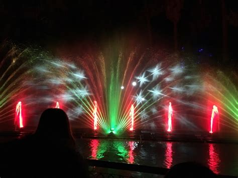 ring in the holidays with la zoo lights socal field trips