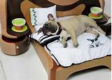 Photos of Mini Beds For Dogs