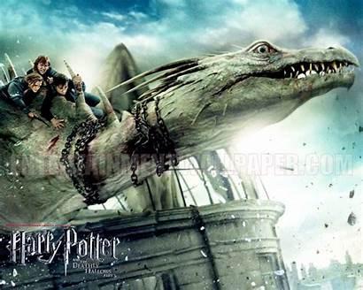 Harry Potter Deathly Hallows Wallpapers 4k Desktop