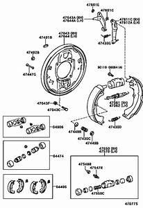 Rear Drum Brake Wheel Cylinder  U0026 Backing Plate For 1997