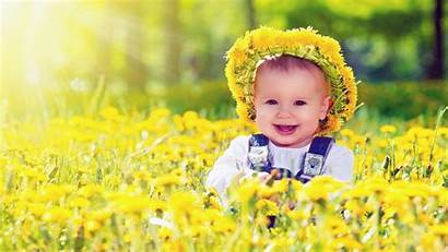 Wallpapers Flowers Anglebaby Yellow Duul
