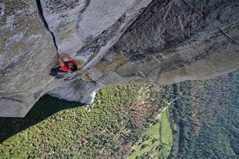 Honnold Free Solo Movie Has Rotten Tomatoes