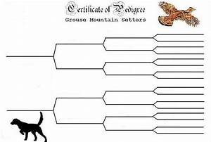 6 best images of dog pedigree chart template free dog With free dog pedigree template