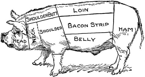 Pig Diagram Clipart Etc