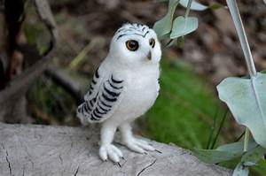 Needle Felted baby snowy Owl by Harthicune
