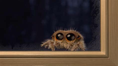 poubelle de cuisine ikea lucas l 39 araignée la plus mignonne du web est de retour en vidéo