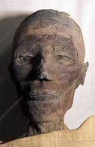 Ramases Ix Mummy  Egypt - Stock Image  3048