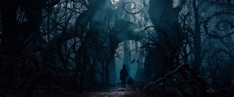dark forest disney wiki fandom powered  wikia