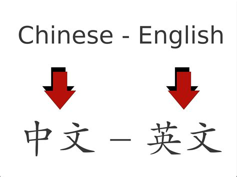 Translation To by How To Become A Translator And What It S
