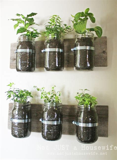 the curated eight diy herb gardens