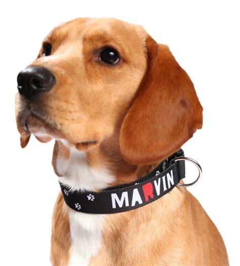 si鑒e psa obojek pro psa s vlastním potiskem