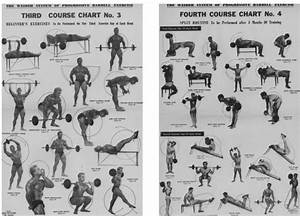 Muscle Loss With Age Chart 1950 Weider Barbell Course Bodybuilding Com Forums