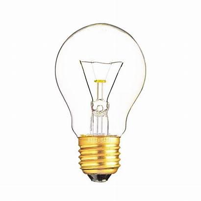 Bulb Glowing Bioneer Mart
