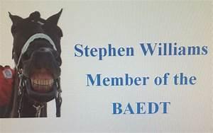 Stephen Williams - Dentist
