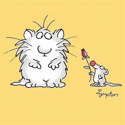 Boynton Sandra Cat Kindness Cartoon Cartoons Snoopy