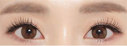 Brown Neo Dali Extra Lenses Contacts Colored