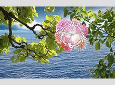 Water Watcher Clock Live Wallpaper Make a stop to