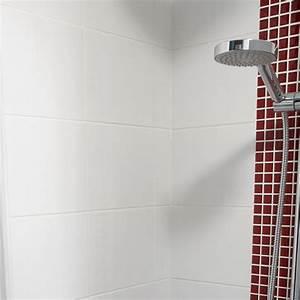 Carrelage Mural Cuisine Castorama : carrelage salle de bain 20x25 gris ~ Melissatoandfro.com Idées de Décoration