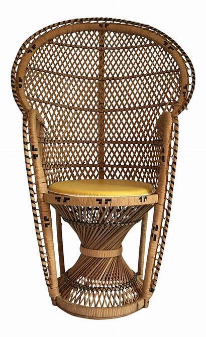 Chair Peacock Wicker Child Chairish