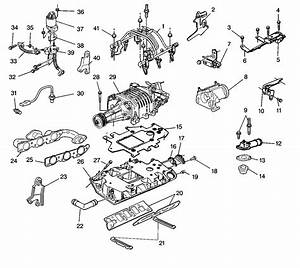 Gm 3800 Engine Diagrams Coolant Gm 3800 Cooling System