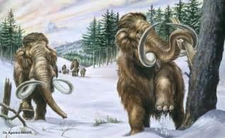 Prehistoric Elephants Mammoths