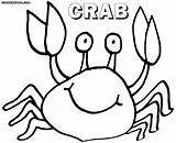 Crab Coloring Pages Colorings sketch template