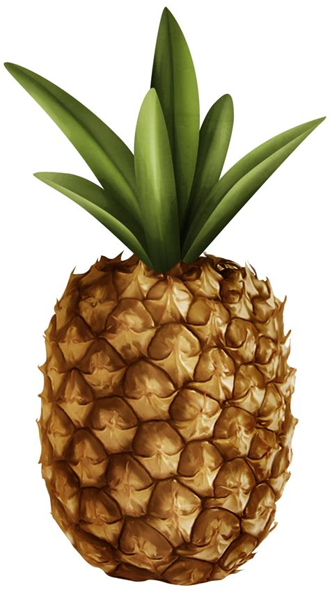 pineapple basket clipart   cliparts