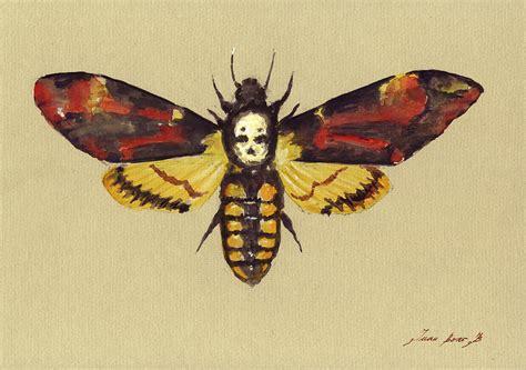 hawk moth painting by juan bosco