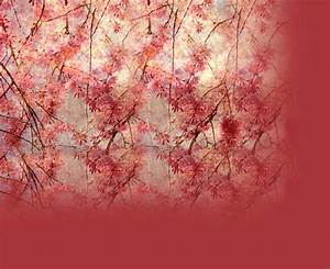 Pink Vintage Flowers Twitter Background-Vintage Theme for ...