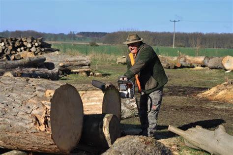 Baumscheiben Längsschnitt Kaufen by Baumscheiben Plodeck