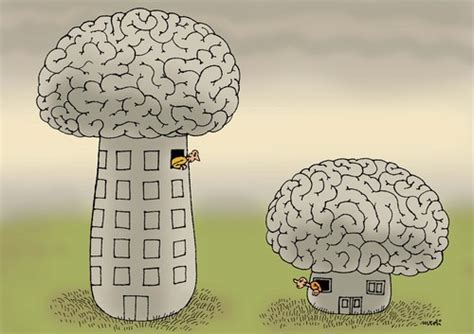 minds  medi belortaja philosophy cartoon