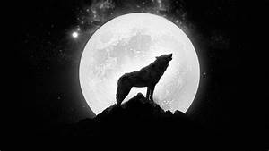 Wolf howling at the full moon wallpaper - 1206348