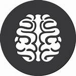 Games Brain Finance Grey