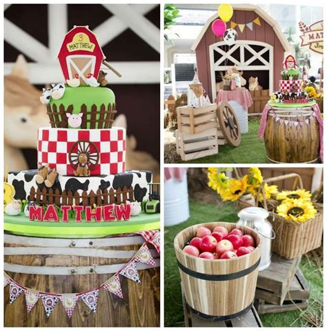 birthday barnyard party farm barnyard party ideas