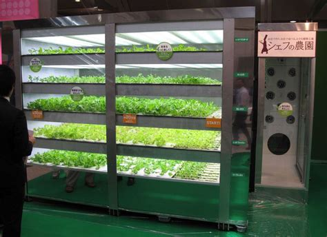 generation vending machines dispense healthy food
