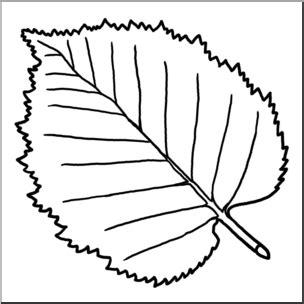 clip art leaf white birch bw  abcteachcom abcteach