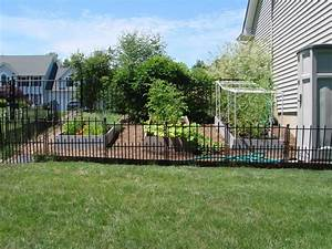 exotic dog fencing ideas fence ideas With outside dog fence ideas