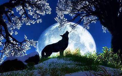 Wolf Howling Pink Windows
