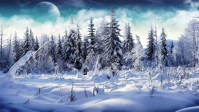 Forest Snowy Wallpapers Winter Cave