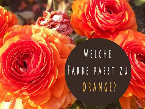 Farben Passen Zu Orange by Welche Farbe Passt Zu Orange Farbkombinationen
