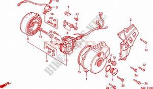 Left Crankcase Cover Alternator For Honda Tl125 1988