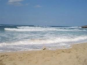 Bilder Meer Strand : bild meer wellen strand zu hotel viva cala mesquida resort in cala mesquida ~ Eleganceandgraceweddings.com Haus und Dekorationen