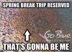 Spring Break Meme - 1000 images about spring break memes on pinterest go blue spring break and vacation trips
