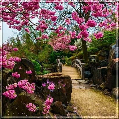 Flores Paisajes Lindos Jardines Wallpapers Lugares Diff
