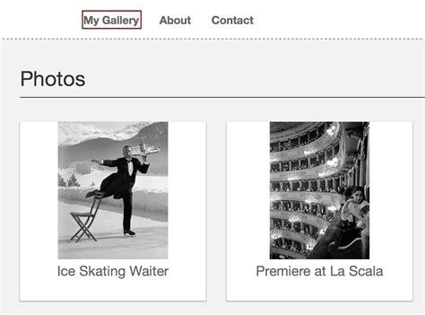 design critique  life gallery  photography website