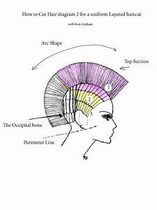 16 Best 90 Degree Haircut Images On Pinterest