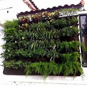 grune wande saftige vertikale garten fur ihr zuhause With katzennetz balkon mit green wall vertical garden